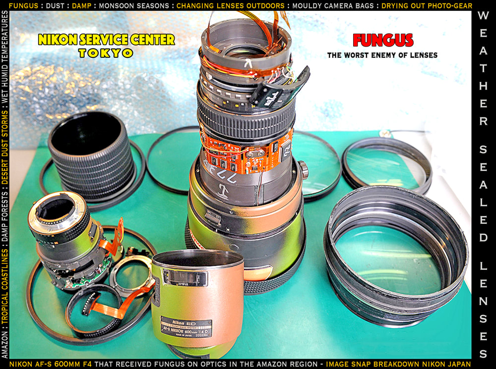 solo overland travel photo gear, fungus in weather sealed lenses, tropical coastlines, Amazon, humid temperatures, damp environments, dust inside camera lenses, image requested by Rick Hemi Nikon Tokyo service centre