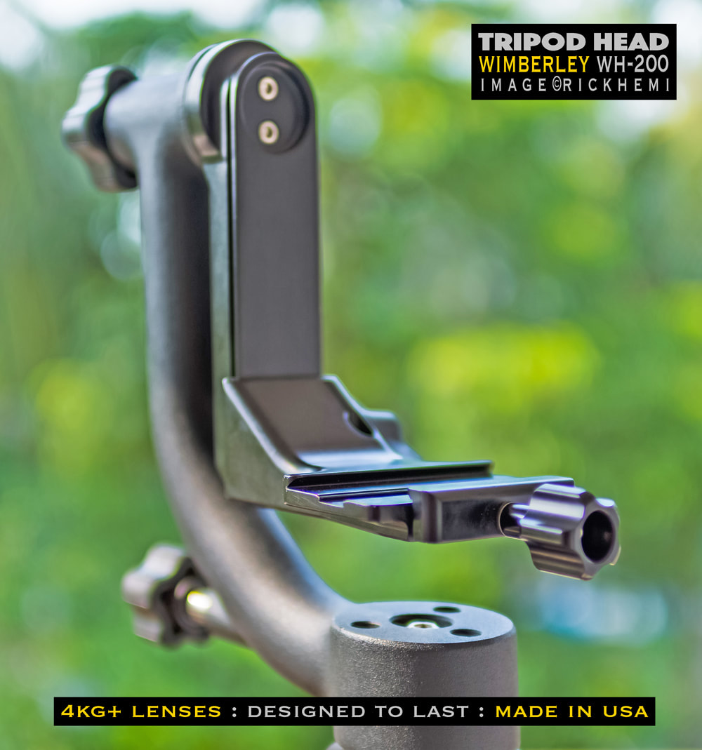 overland travel photo-gear, Wimberley WH-200 tripod head, image by rick hemi
