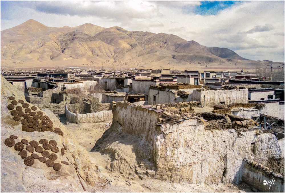Yak dung being slowly dried in the midday sun in Samye Tibet