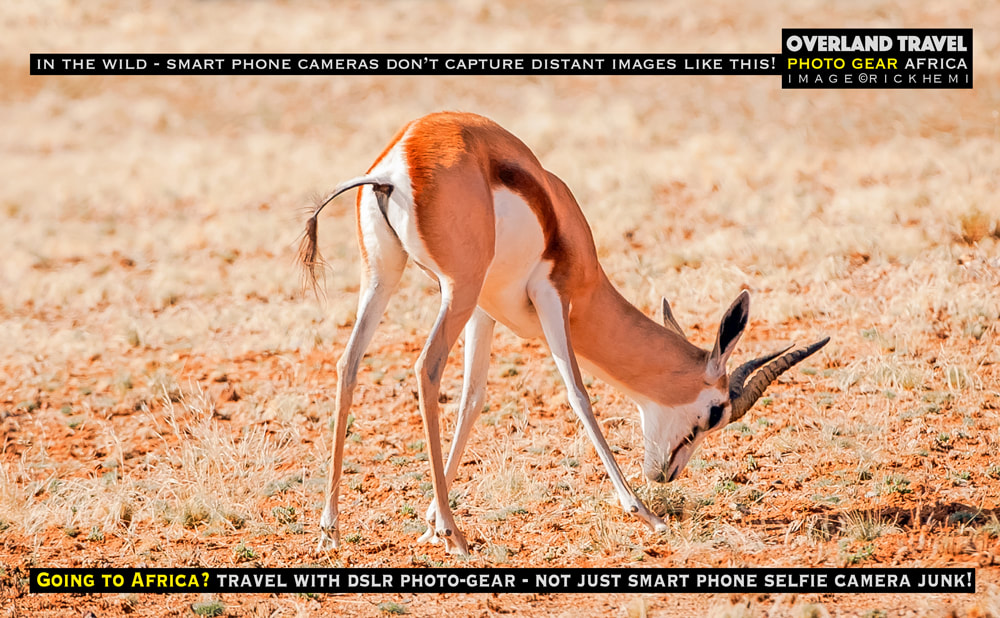 solo overland travel wildlife snaps Africa, travel with DSLR photo-gear, image by Rick Hemi